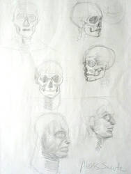 Skulls 2006 by The-original-ninja-c
