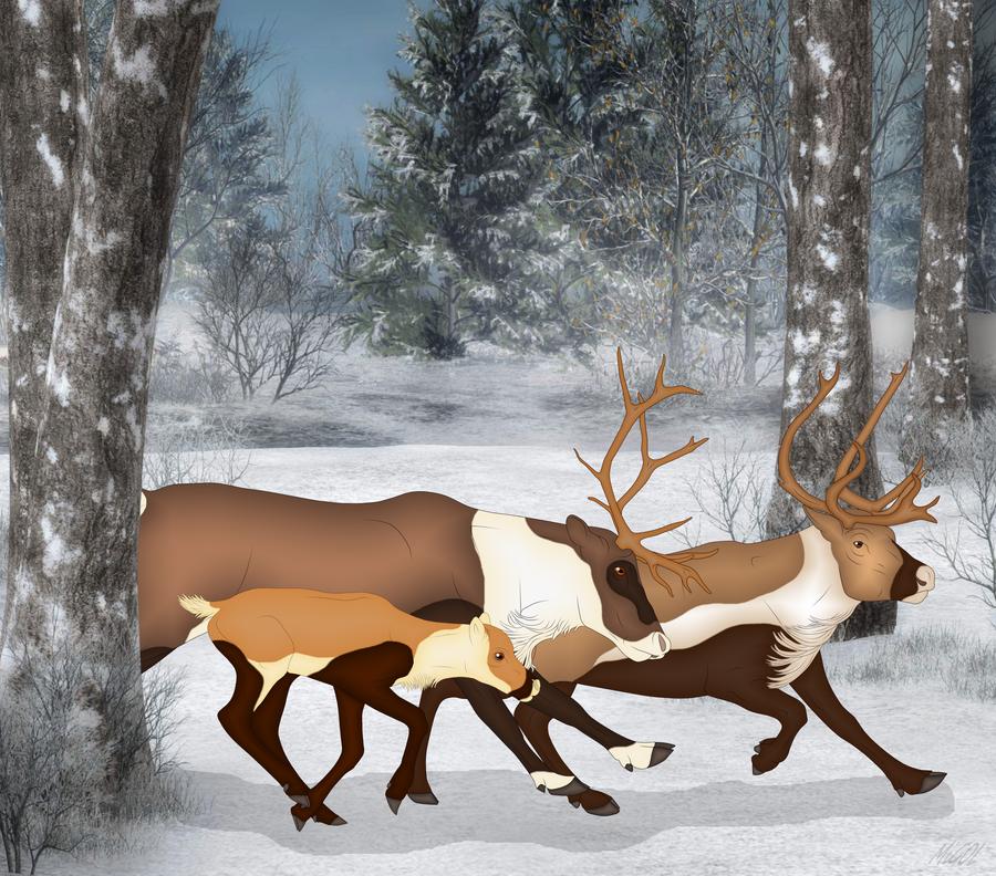 Dashing Through The Snow by Smigolson