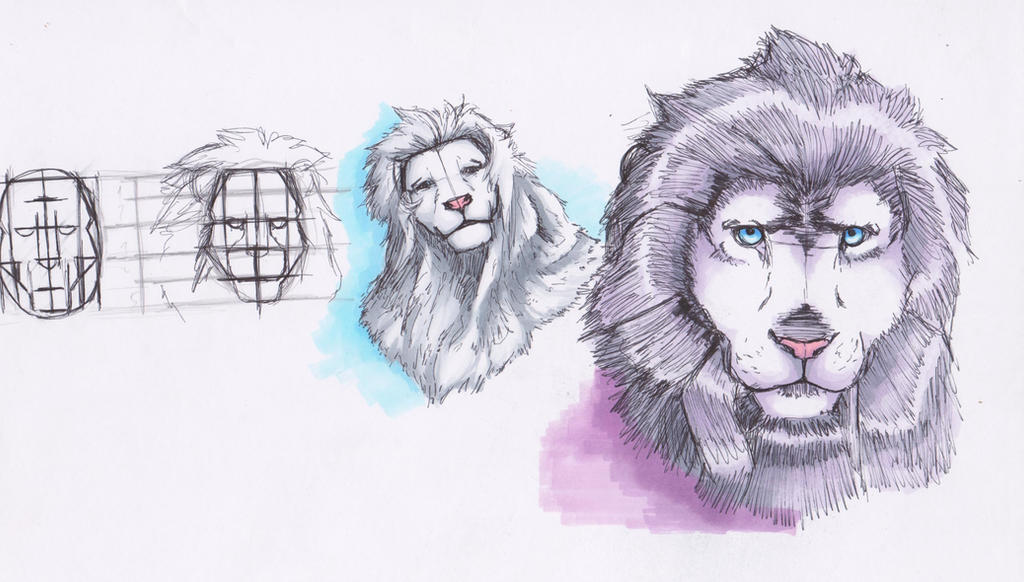 Lion heads by takashiyau