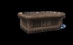 Temple ceremonial dfg (2)