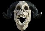 Dragon Skull 01