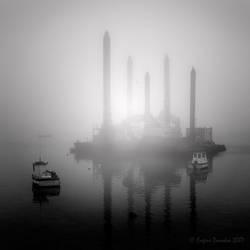 Coastal Fog III