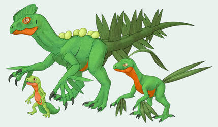 Treecko, Grovyle, and Sceptile by RacieB