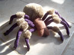 Tarantula Plush Project 2