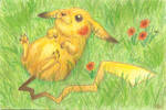 Field Mouse by RacieB