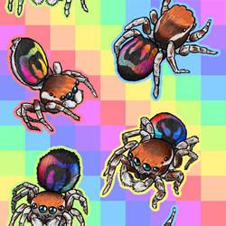 Rainbow Jumping Spider tiled bg