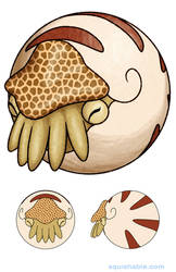 Squishable Nautilus