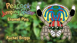 Peacock Jumping Spider Enamel Pins