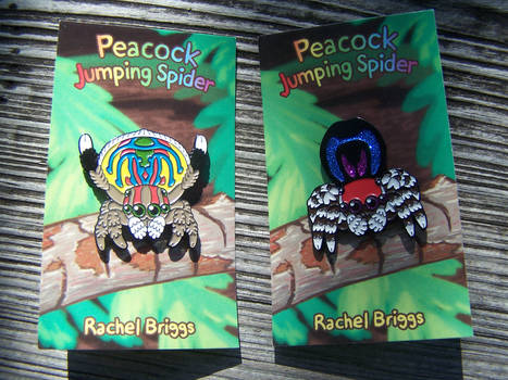 Peacock and Rainbow Jumping Spider Enamel Pins