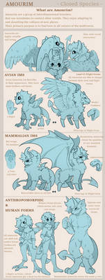 [Amourim] Form Guide by kiingpink