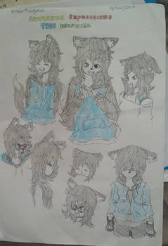 Expressions Selection 216 (Tori)