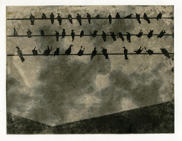 Birds on a Wire by calton