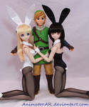 Link and his Bunny Girls