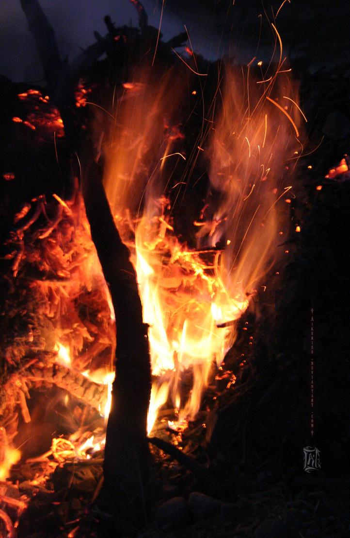 Fire Chook by Aikurisu
