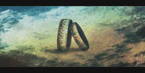 Forgotten Rings