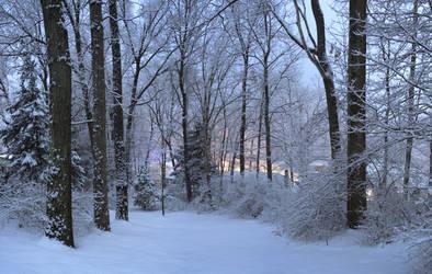 Fresh Snow (8753 x 5556) by Lazerlord10