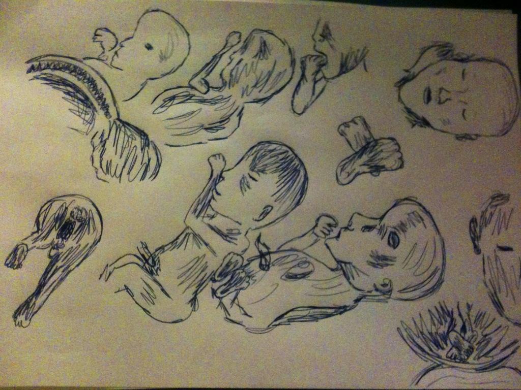 Drawings from Henry's scan by KatrinWinner