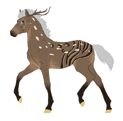 N4117 Padro Foal Designed by Mimi-McG by HaloSon