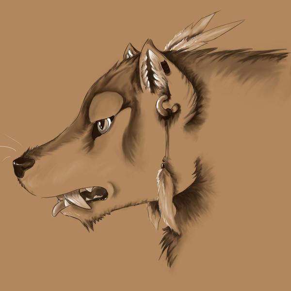 Native American Wolf Drawings