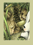 A Bunny's Tale part 1