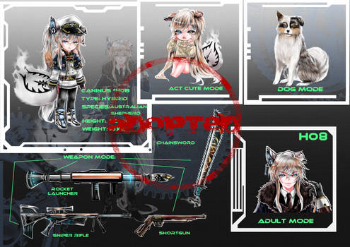 Custom Caninus H08