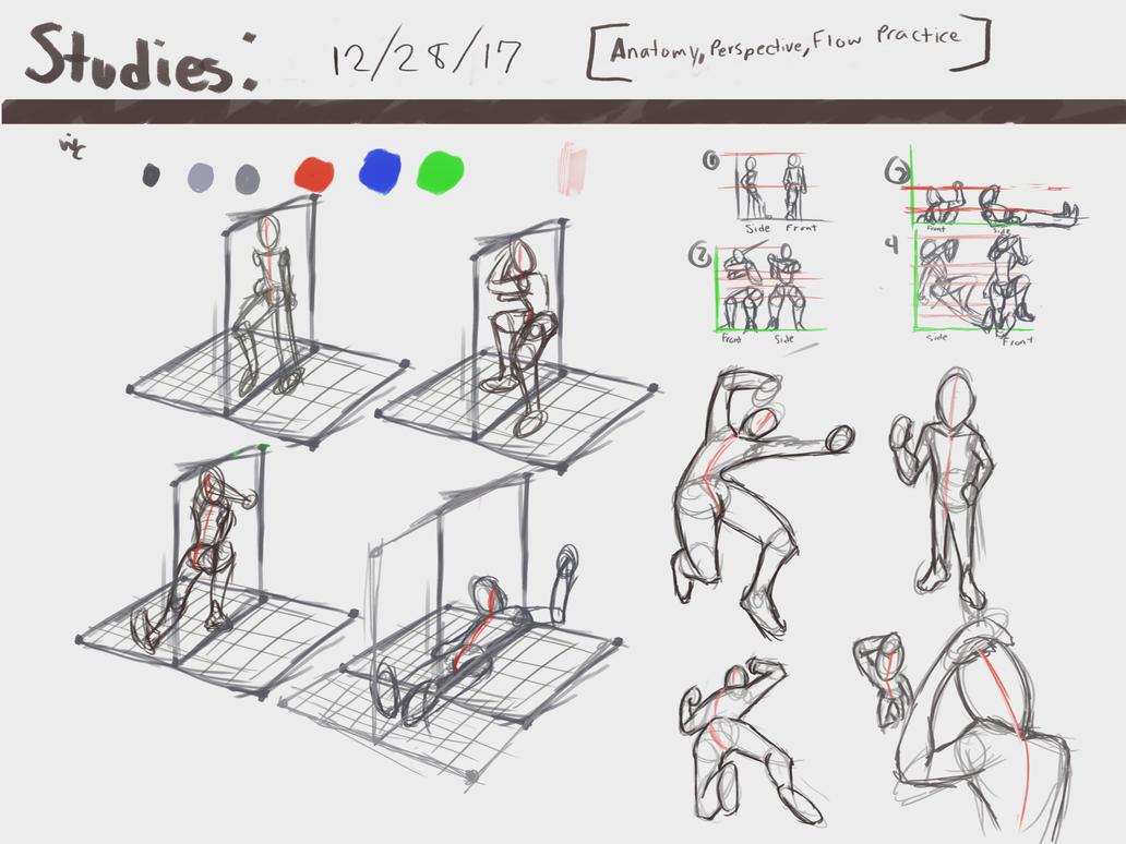 Studies 5: Anatomy, Perspective, Flow Practice by 0uterHaven on ...