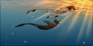 underwater adventuress