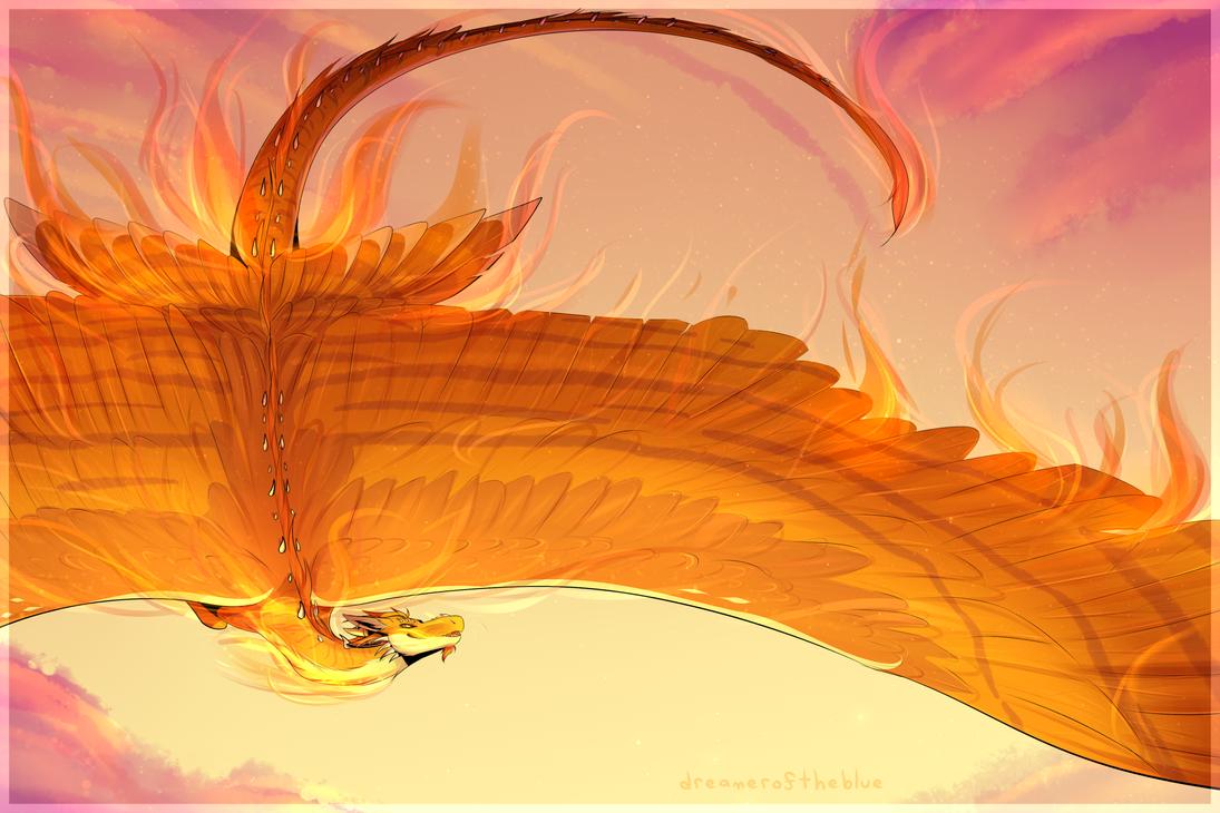 phoenix by dreameroftheblue