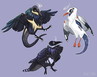 [COM] Ravens and gull