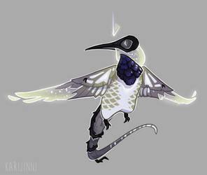[COM] Black chinned hummingbird