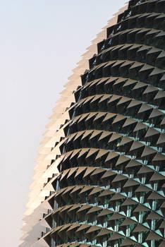 Sinsgapore Architecture 2
