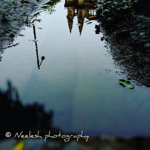 After the rain..