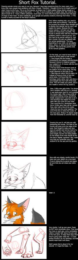 A short How-to fox Tutorial 8D