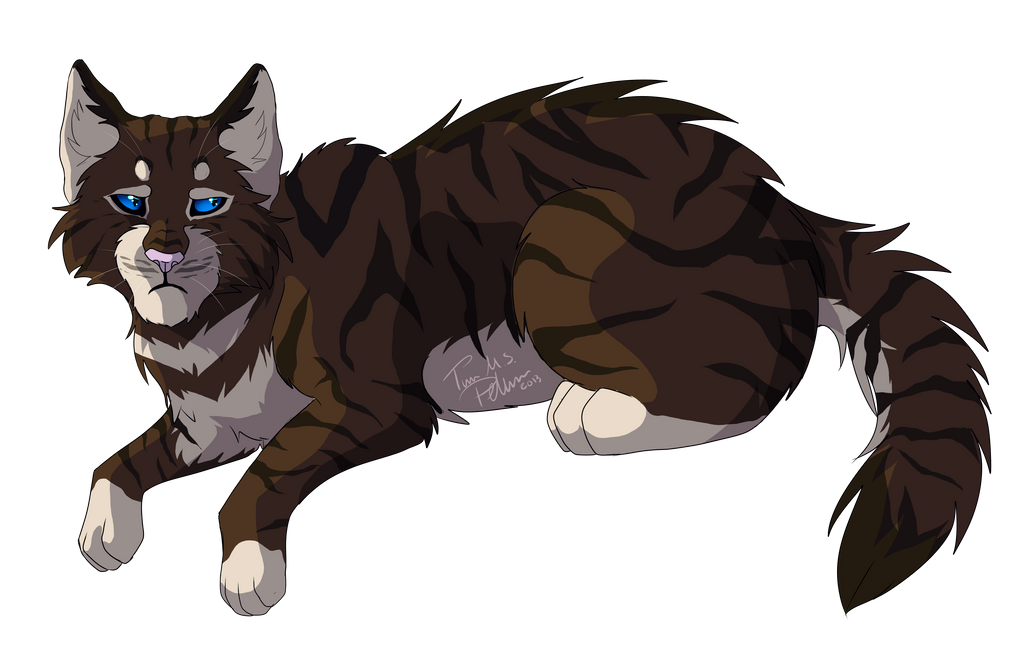 Warrior Cats Anime Blue And Black Tips