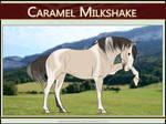 2813 AS Caramel Milkshake - SOLD