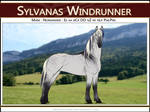 4866 AS Sylvanas Windrunner - SOLD