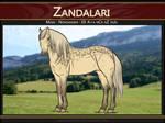 5276 AS Zandalari