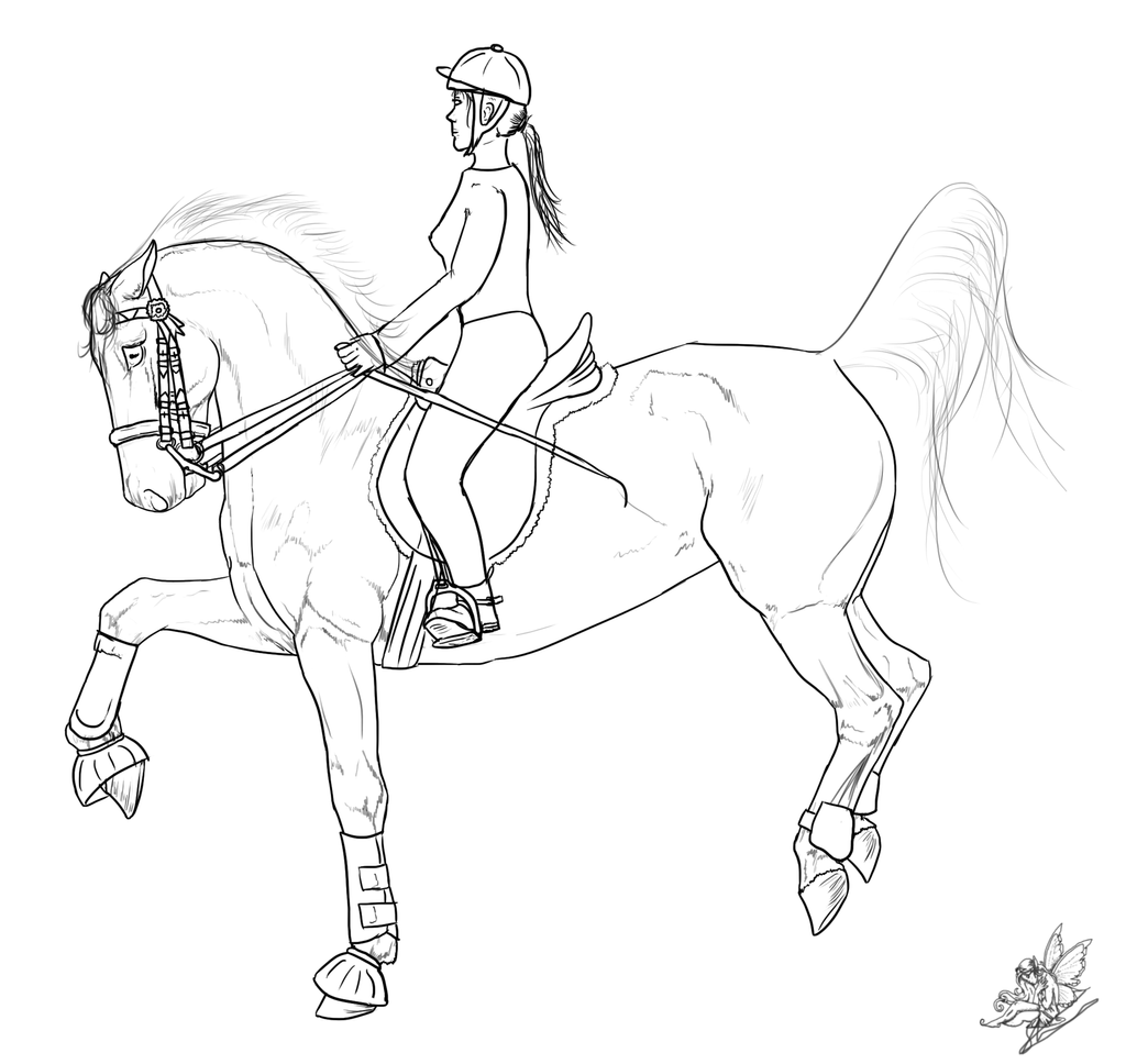 Free Horse Riding Lines By Emmy1320 Andalusian Greyscale By Emmy1320 On  Deviantart How To Draw A