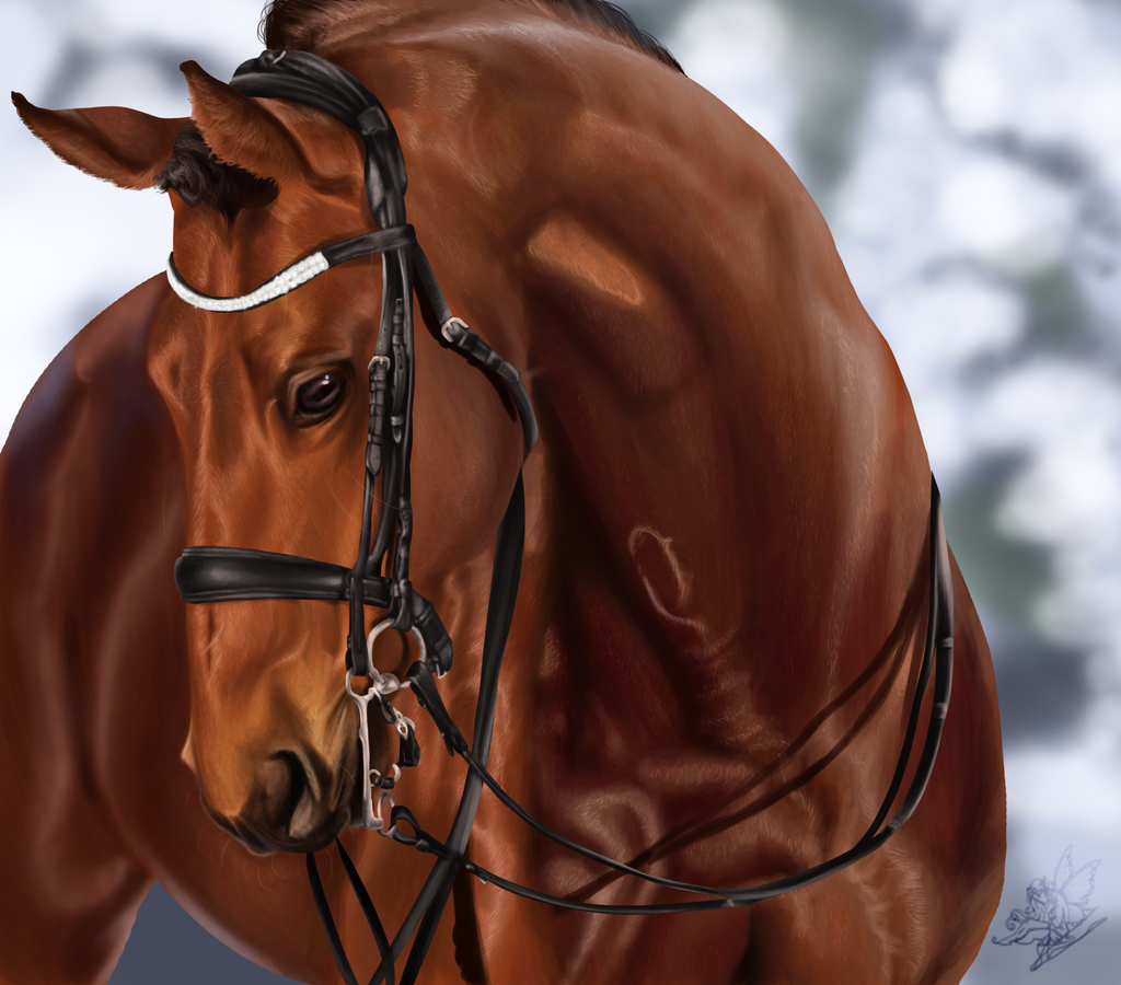 Horse portrait- Realism by emmy1320