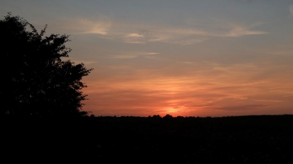 Sunset by LouiseGrundentaler