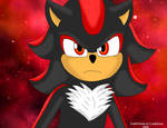 Paramount Shadow the Hedgehog by GothNebula