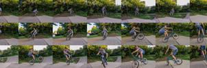 BMX-Sequence...