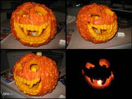Pumpkin by floggerSG