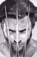 Wolverine (Hugh Jackman) by sarcazmatic