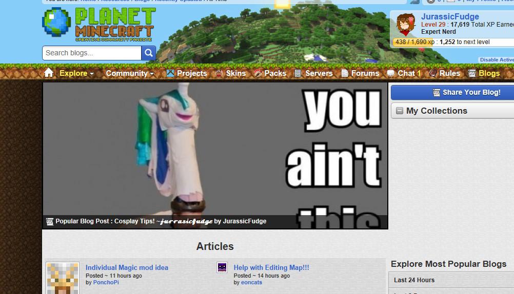 Cosplay Tips! ~ Minecraft Blog - 웹