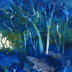 Una luce in fondo al bosco