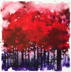 Io sono una selva e una notte di alberi scuri