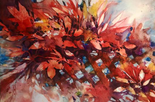 Arbusti acquarello su carta