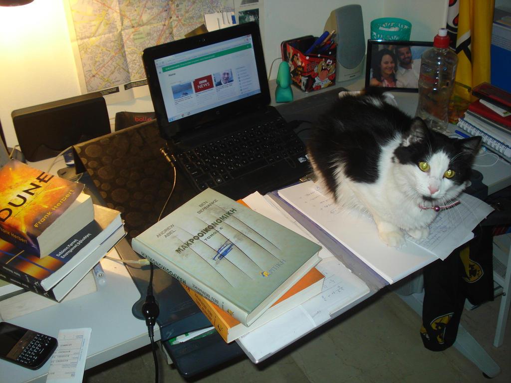 Cat On Desk By Mits Giotix On Deviantart