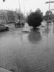 Rainy Day by Mits-Giotix